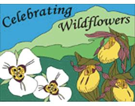 美国森林服务野花观赏 United States Department of AgricultureForest Service Celebrating Wildflowers