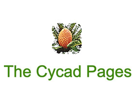 苏铁的网页 The Cycad Pages
