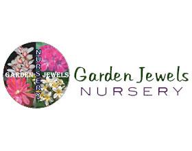 美国Garden Jewels 昙花苗圃