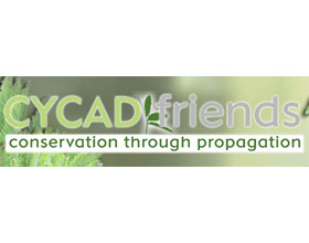 苏铁之友 Cycadfriends