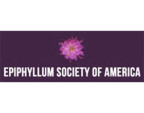 美国昙花协会 Epiphyllum Society of America
