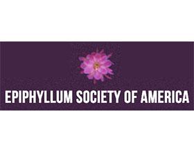 美国昙花协会 Epiphyllum Society of America