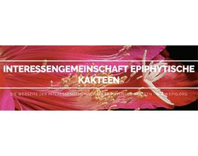 德国EPIG昙花兴趣社区