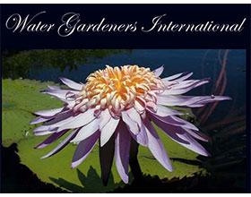 国际水花园园丁 Water Gardeners International