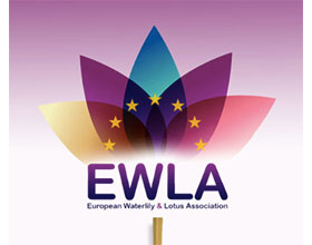 欧洲睡莲和荷花协会 European Water Lily and Lotus Association