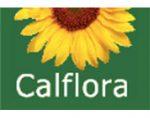 美国加州野生植物数据库 Calflora