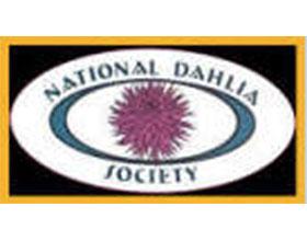 英国大丽花协会 National Dahlia Society