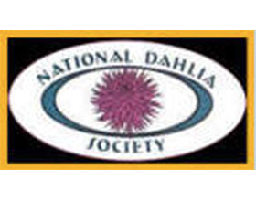 英国大丽花协会 National Dahlia Society