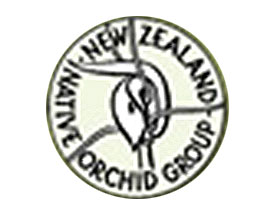 新西兰原生兰花小组 New Zealand Native Orchid Group