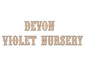 英国德文紫罗兰苗圃 Devon Violet Nursery
