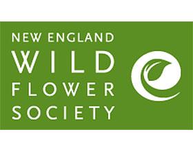 新英格兰野生花卉协会 New England Wild Flower Society