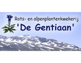 荷兰岩石和高山植物苗圃 De Gentiaan