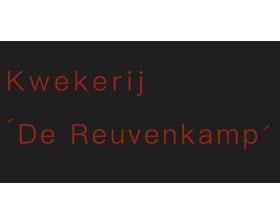 荷兰岩石园植物苗圃 De Reuvenkamp