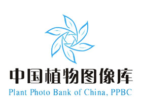 中国植物图像库 Plant Photo Bank of China(PPBC)