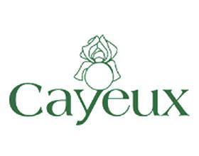 法国CAYEUX鸢尾 CAYEUX IRIS