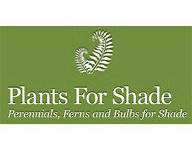 英格兰长英亩植物 Long Acre Plants