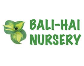 北爱尔兰Bali-Hai邮购苗圃 Bali-Hai Mail Order Nursery