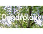 芬兰树木协会 Dendrology Society DendrologiskaSällskapet