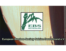 欧洲竹子协会德国分会 European Bamboo Society Sektion Deutschland e.V.