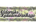 Oldervik 杜鹃花园 Oldervik Rhodorendron Garden