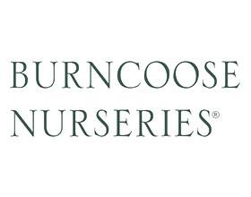 英国伯恩库斯苗圃 Burncoose Nurseries