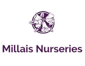 英国米拉莱斯苗圃 Millais Nurseries