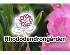 瑞典杜鹃花园 Hästarna på Rhododendrongården
