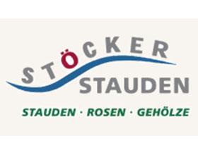 德国斯托克多年生植物 Stöcker Stauden