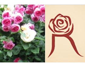德国玫瑰之友协会 Gesellschaft Deutscher Rosenfreunde e,V.