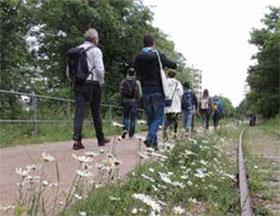 全球城市绿化受到巴黎TNOC峰会的启发 Urban greening worldwide inspired by TNOC Summit in Paris
