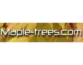 美国枫树网 Maple-Trees.com
