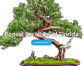 美国佛罗里达州盆景协会 Bonsai Societies of Florida