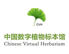 中国数字植物标本馆国家植物标本资源库 Chinese Virtual Herbarium