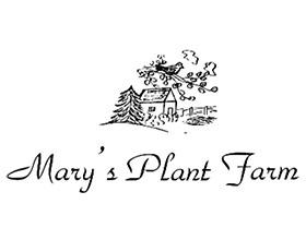 美国玛丽的植物农场 Mary's Plant Farm