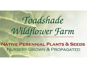 美国蟾蜍阴影野花苗圃 Toadshade Wildflower Farm