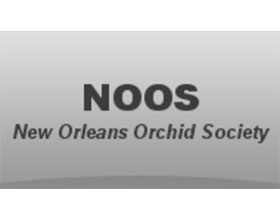 美国新奥尔良兰花协会 The New Orleans Orchid Society (NOOS)