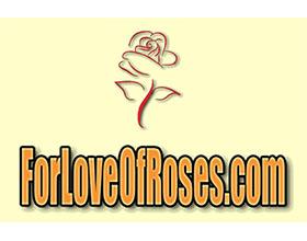 玫瑰之恋 For Love Of Roses