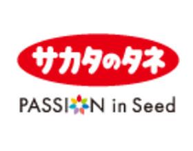 日本SAKATA酒田种子公司