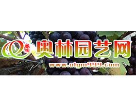 安徽奥林园艺有限责任公司