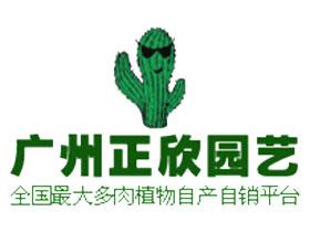 广州正欣园艺