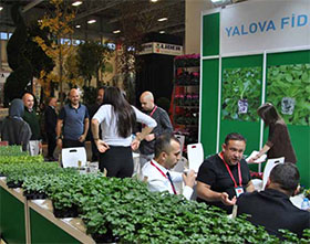 土耳其欧亚植物博览会 FLOWER SHOW TURKEY EURASIA PLANT FAIR