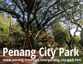 马来西亚槟城国家公园 Penang City Park