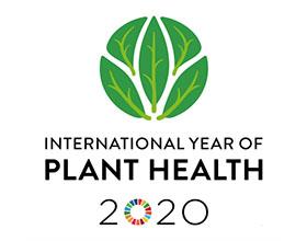 比利时佛兰芒植物医生和研究人员在2020年提高对植物健康的关注