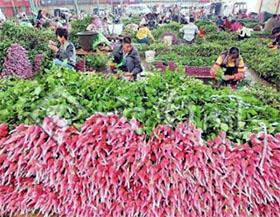 昆明可能成为中国的迈阿密-花卉进口和分销重要港口