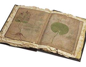 美国普渡大学园艺学教授因揭示伏尼契手稿的秘密而获奖