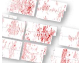 病虫害数字地图 DIGITAL MAPPING of pests and diseases
