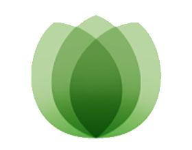 绿色城市报告 Green City Post-2020年的清晰愿景