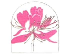 美国新英格兰植物俱乐部New England Botanical Club