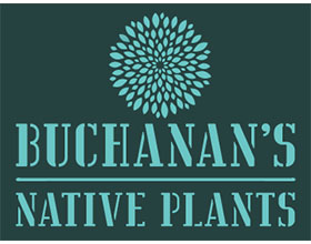 美国布坎南的本地植物 Buchanan's Native Plants