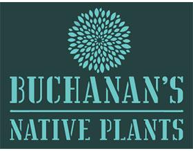 美国布坎南的本地植物 Buchanan's Native Plants